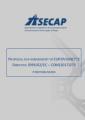 POSITION PAPER ON PROPOSED AMENDMENT TO 1999/62/EC EUROVIGNETTE DIRECTIVE